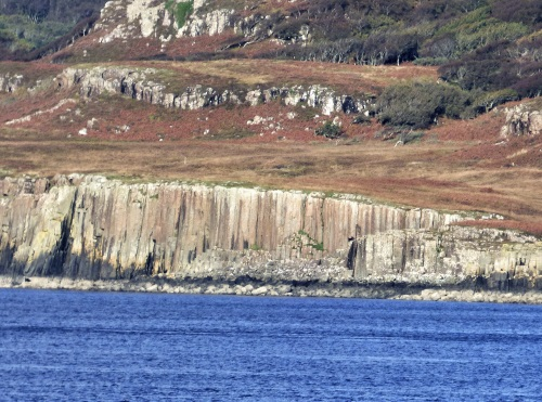 Basalt collumns on Ulva from Mull