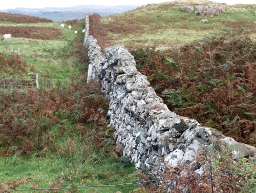 Dry stone wall off Cailaich road