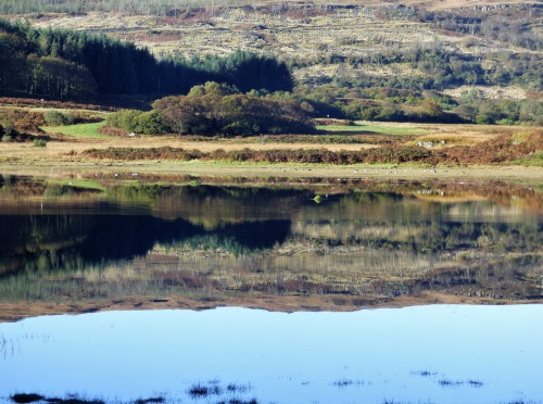 Reflection on still waters Dervaig